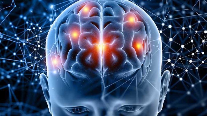 Neuro Linguistic Programming (NLP- Duyu Dil Programlama) Practitioner Kursu